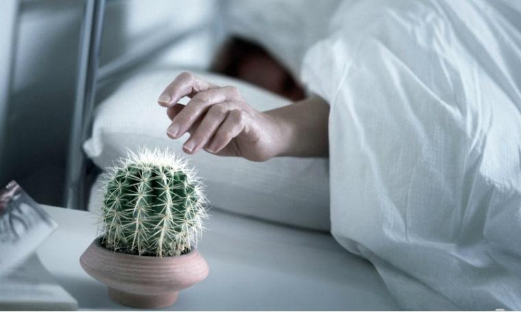 Постепенно укрощаем будильник