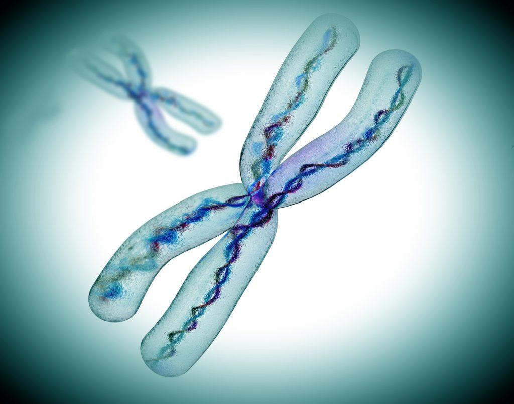 Причины потери эмбриона